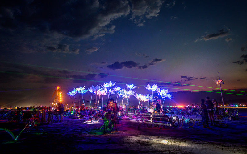 Pulse and Bloom was my favourite art piece from Burning Man 2014