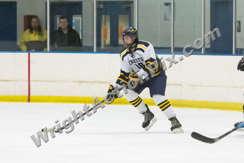2013 Clarkston Hockey