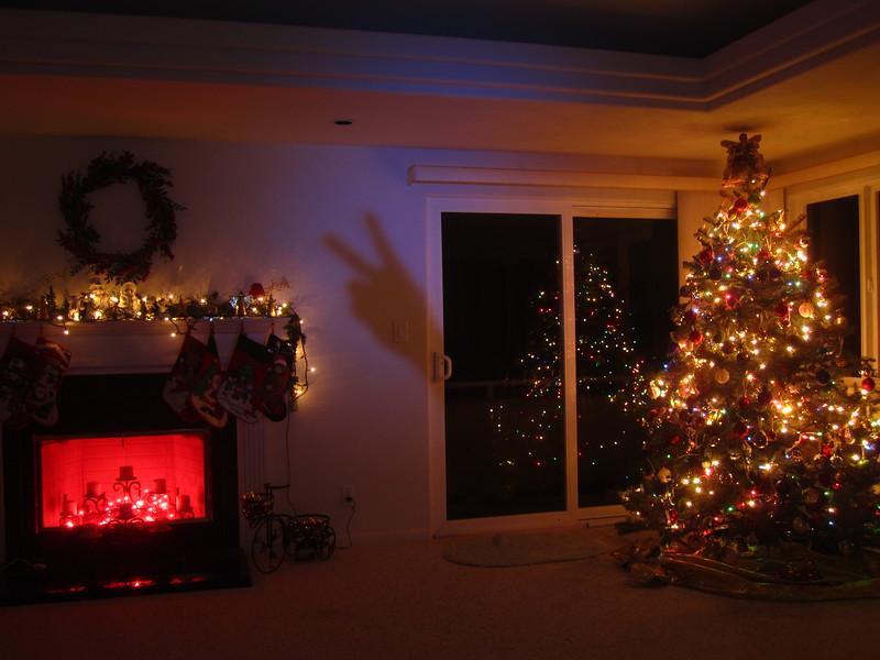 Hawaii - Playing with Light Christmas-16.JPG