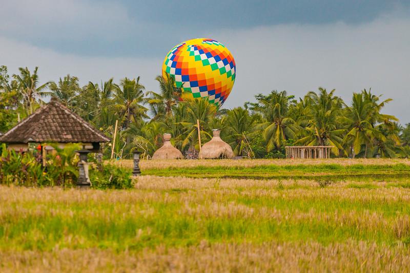 Bali (260).jpg