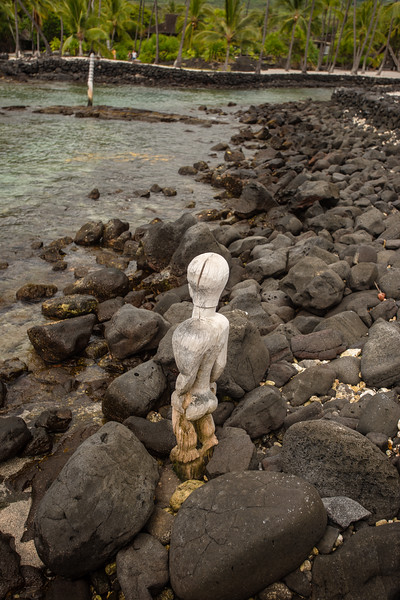 Hawaii2019-379.jpg