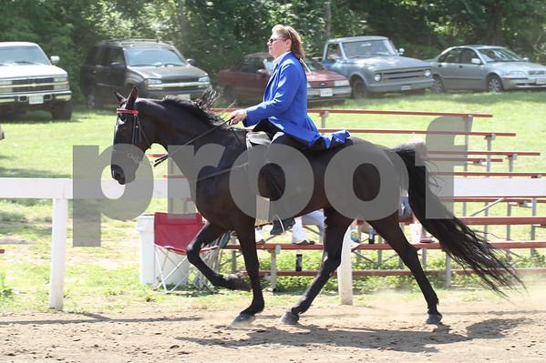 Ivanhoe Horse Show 2010- Racking classes