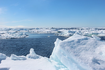 Antarctica 2019