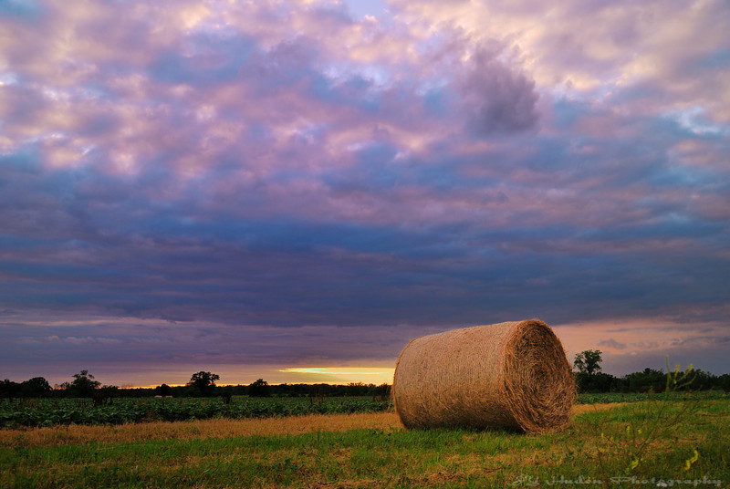 July 15th, 2008 - I am back on my most normal routine, a ride in the country side. I am always inspired by the calm and quiet moments, there are tons of images like this but still never the same I had was feeling something when I shot it! Have a great day - JY