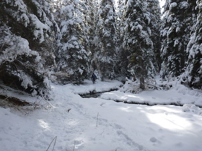 Silver Lakes w Norm March 1 2015