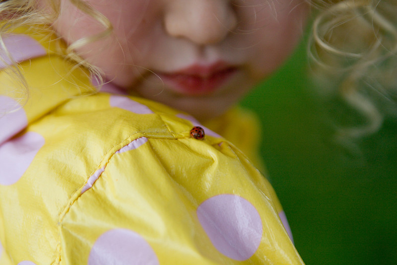 A ladybug lands on Beverly's shoulder