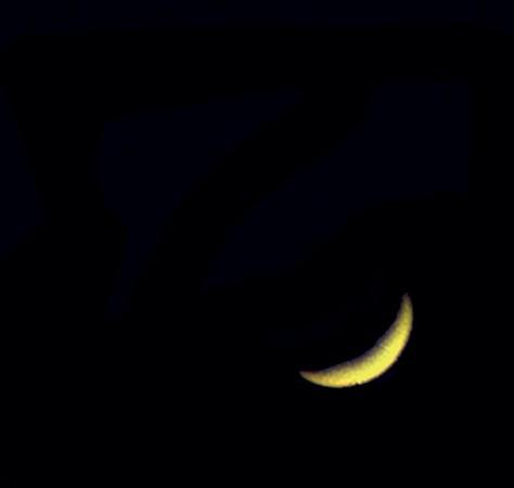Venuše 4.5.2012 - Bresser Skylux 700/70, barlow 2x, okulár 12mm, Kodak Z1085IS afokálně