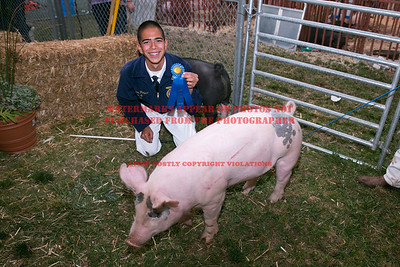 2015 Citrus Fair - Swine