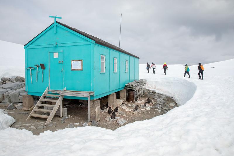 2019_01_Antarktis_05322.jpg