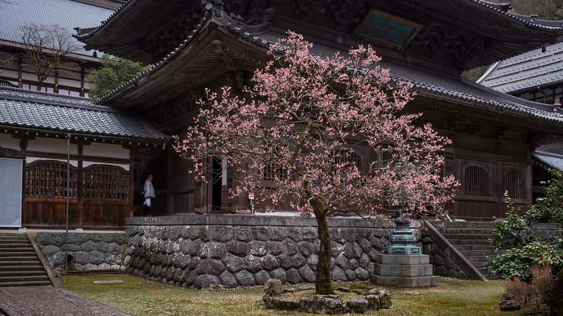 Eiheiji Temple 1004138 .jpg