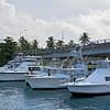 Deep sea fishing boats in a marina.