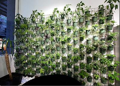 vertical-container-gardening-0.jpg