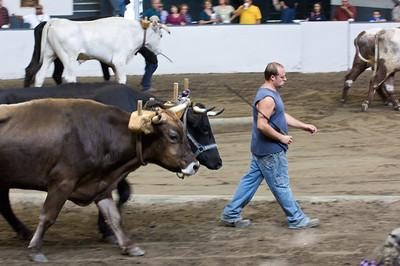Big E '09 Ox Pull 3200 lbs