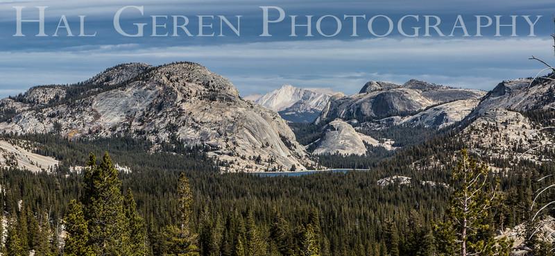 Tenaya Lake Tioga Pass, California 1610S-TL1