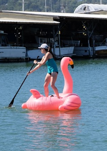 Marin Parks Clean up - Paddling flamingo