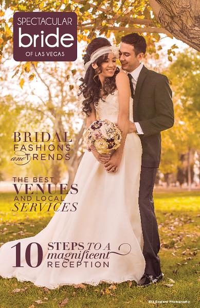 2015 Spectacular Bride Magazine Covers