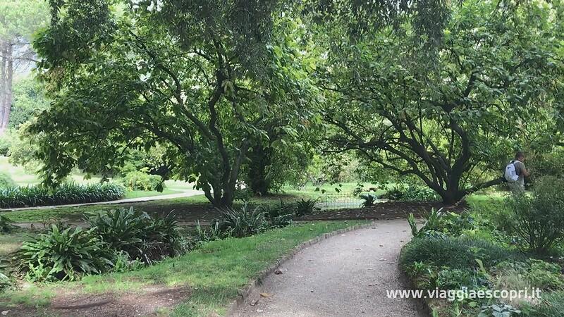 Giardino di Ninfa (33) (frame 109).jpg