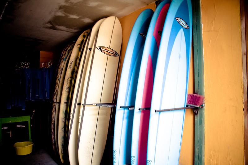 surfing_4838887077_o.jpg
