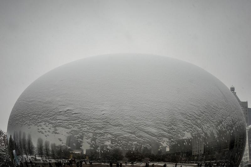 Just a hint of snow Bean - December 11, 2016