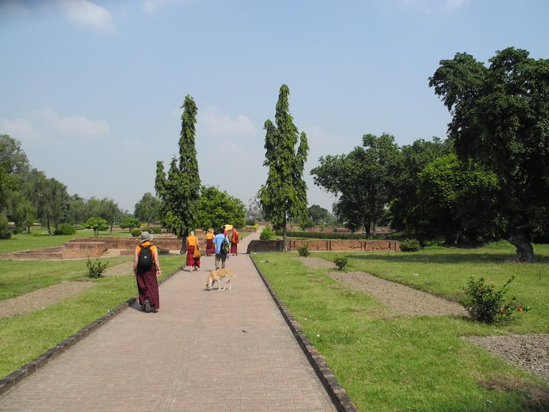 india2011 756.jpg