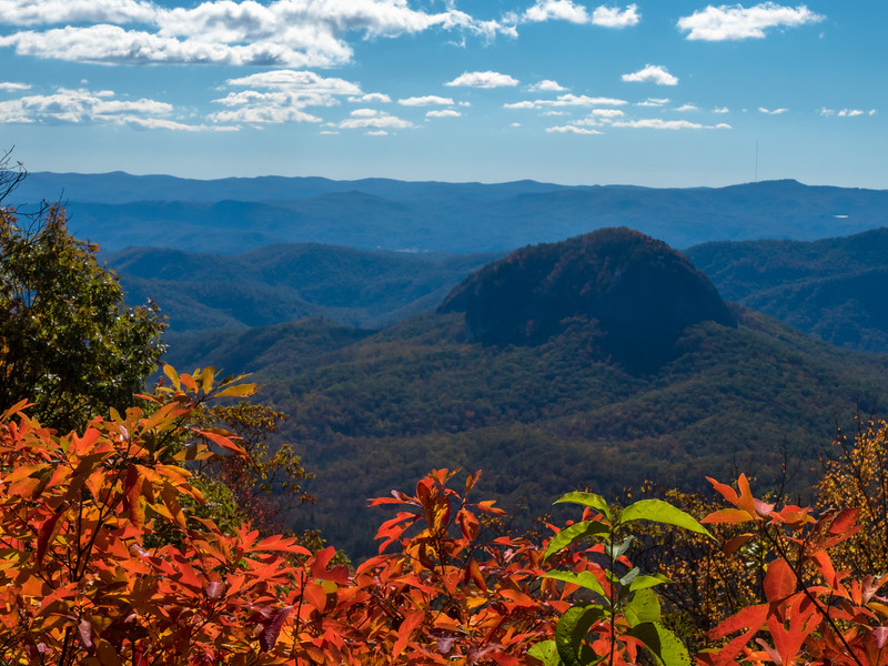 98 Oct 23 Pisgah Forest BR Pkwy Log Hollow (1 of 1).jpg