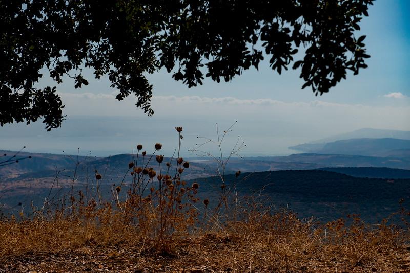 Israel-6677.jpg