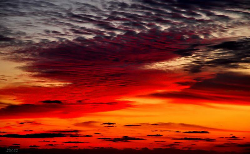 Bahamas 02-19-2010 4.jpg