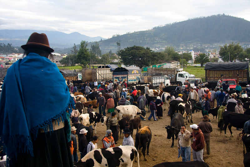otavalo-animal-market_4881802241_o.jpg