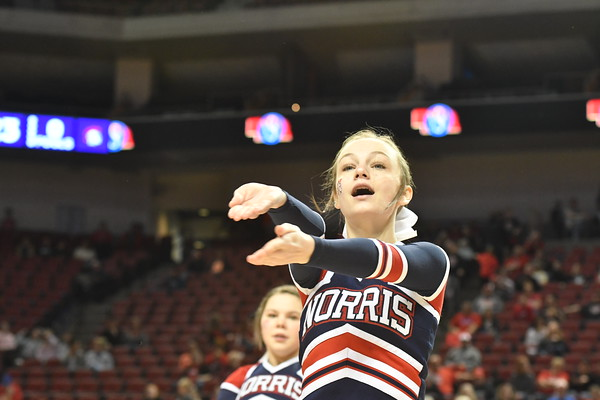 Cheer/Dance at Girls State Basketball