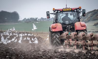 Ploughing - April 2020