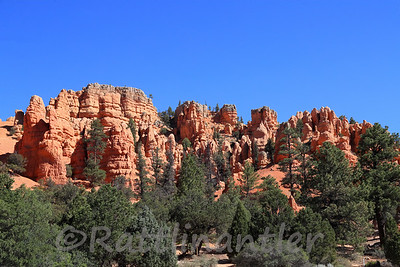 Zion and Bryce National Parks 2021