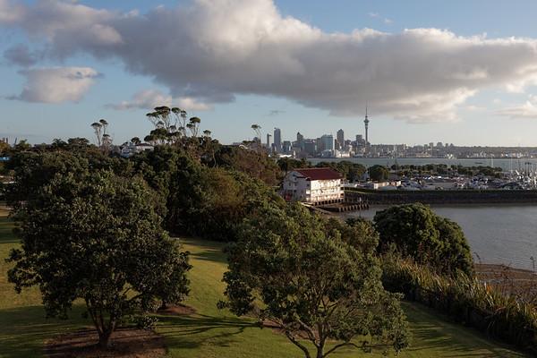 Auckland Views