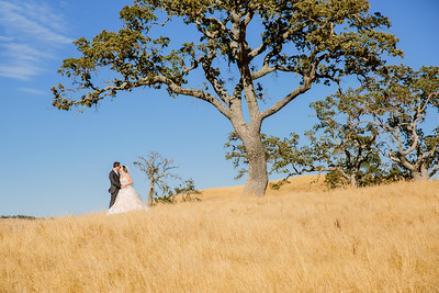 Scott and Morgan Wedding