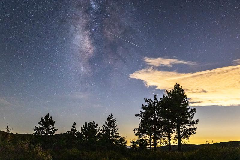Milky Way, Perseid Meteor, and Jeffrey Pines.
