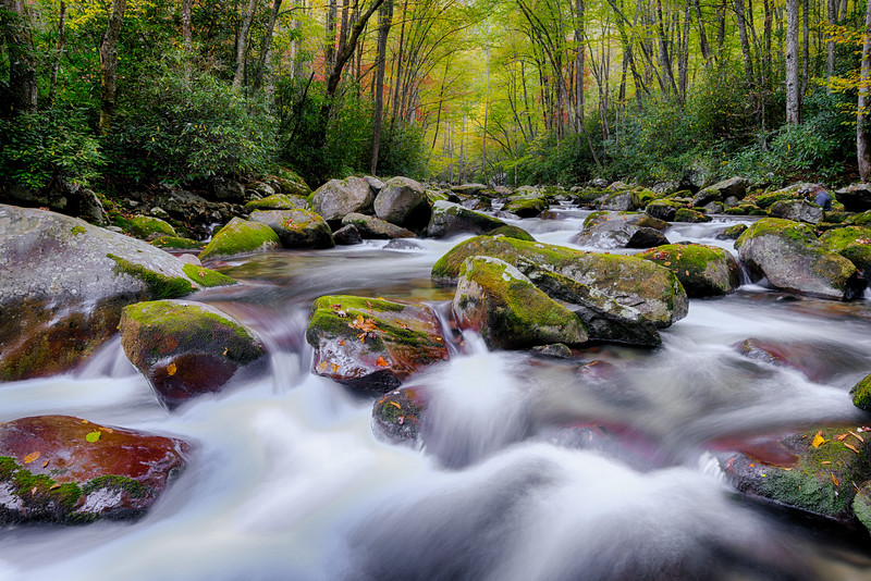 GREAT SMOKIES-BIG CREEK-0139_HDR.jpg
