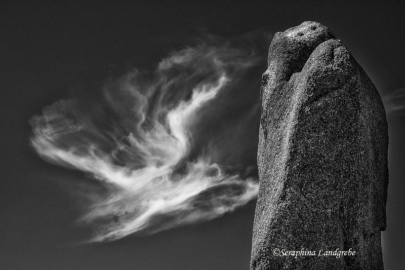 _DSC5884Cloud Angel & Snake B&W.jpg
