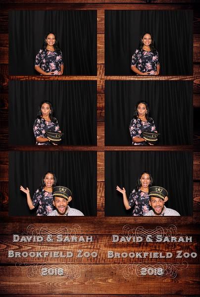 David & Sarah's Wedding (08/26/18)