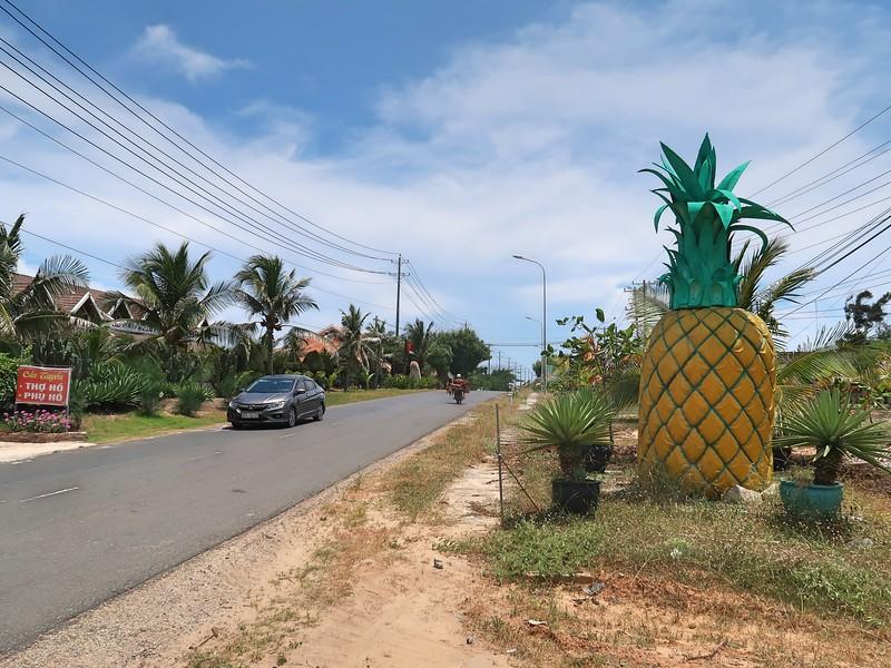 IMG_3290-pineapple.jpg