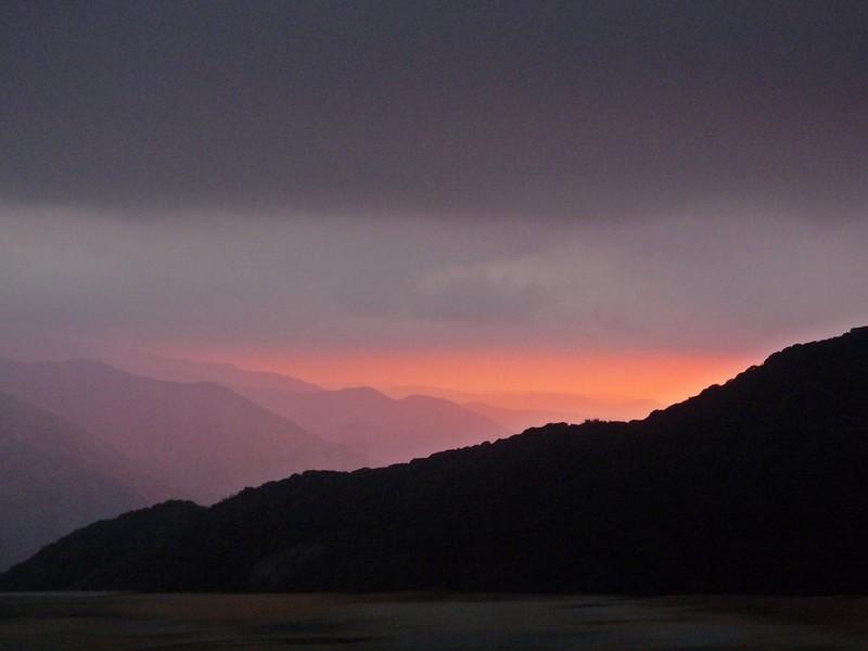 sequoia sun.JPG