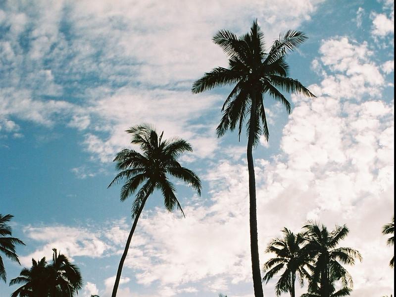 Hawaii-559.jpg