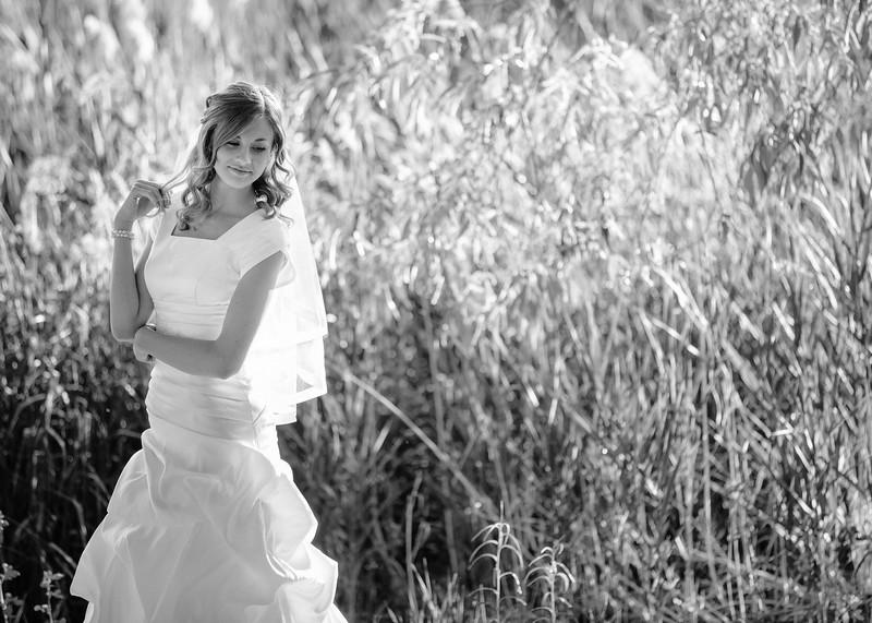 Amy Bridals 033bw.jpg