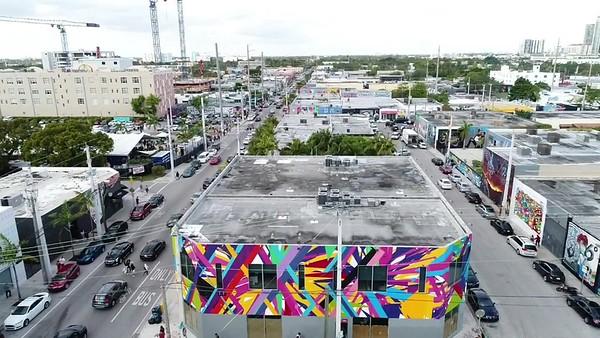 Life in Color Miami