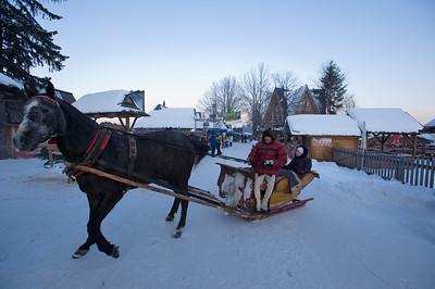 Horse drawn open sleigh on Gubalowka Hill, Zakopane, Tatra Mountains, Podhale Region, Poland