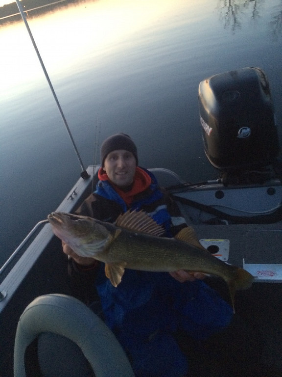 ". Alan Wilczek of Royalton had this to say about this 30-inch walleye: ""First fish on opening morning!  Great way to start the season with a calm, beautiful sunrise on Lake Alexander with Ryan Schefers.  Looking forward to more days on the open water like this one!\"" (Photo courtesy Alan Wilczek)"