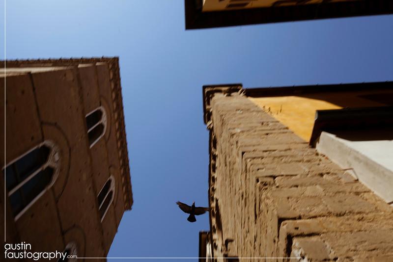 20110819-IMG_9115-ITALY-ROMEweb.JPG
