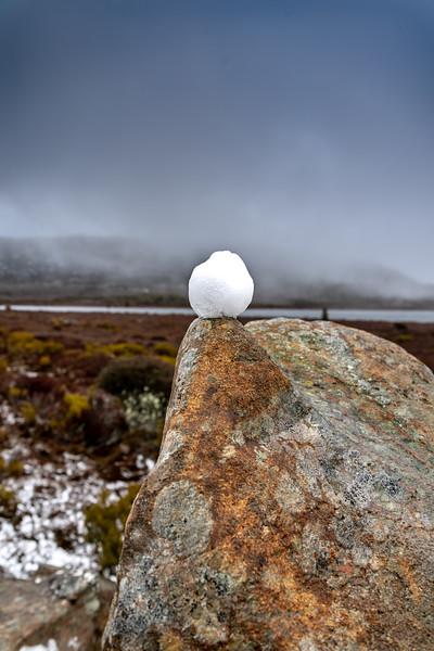 Tasmania-JUL2019-Snowball-1.jpg