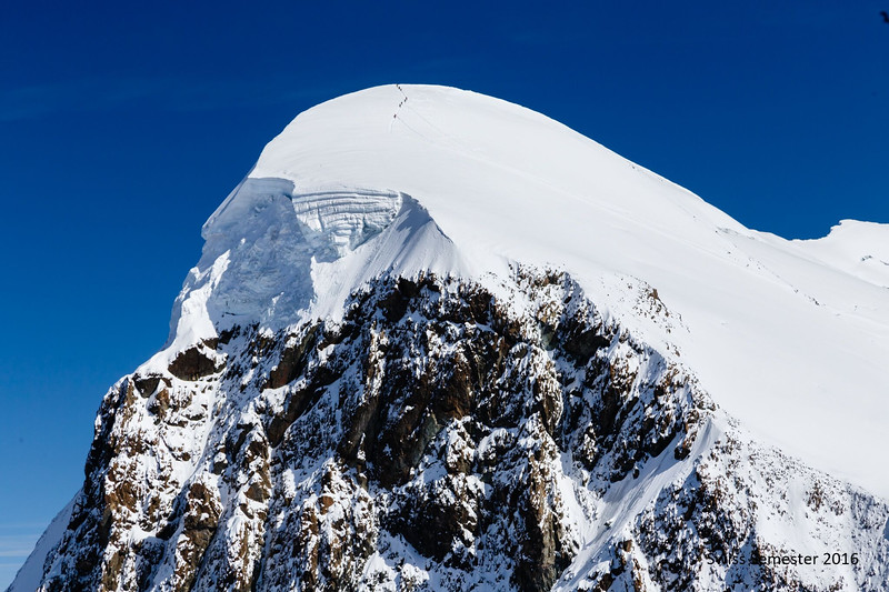 BREITHORN (yes, those ants are people!)