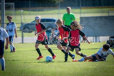 Falcons Soccer (9-16-2018)