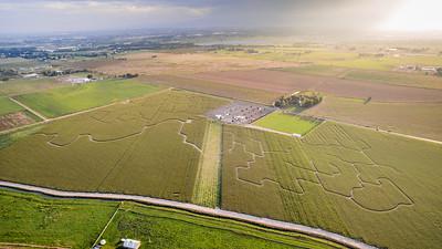 Northern Colorado Corn Maze 2017