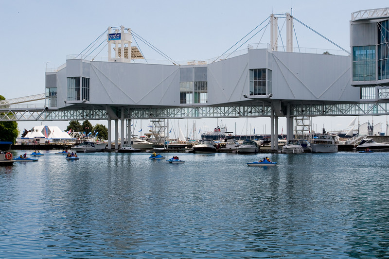 Paddle Boats At Ontario Place